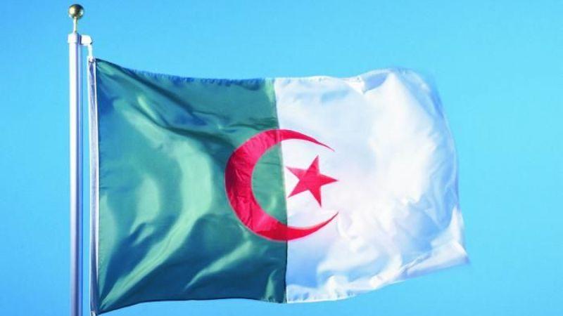 Cezayir'de bir çok kentte çıkan orman yangınlarında ölü sayısı 7'ye yükseldi
