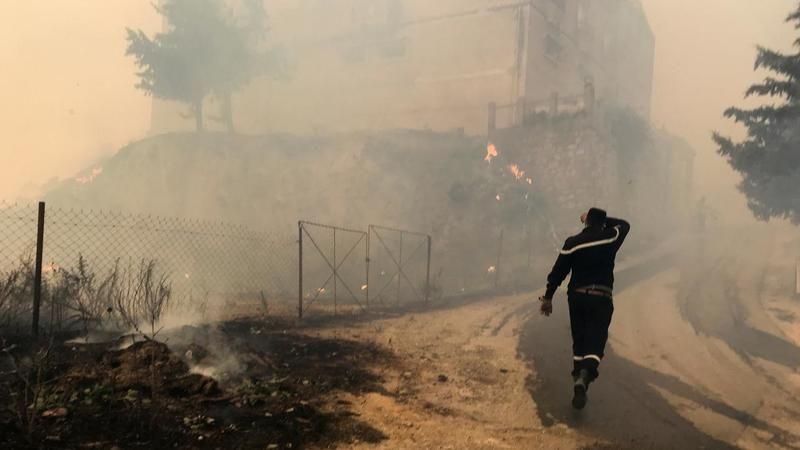 Cezayir'de orman yangını: Ölü sayısı 65'e yükseldi