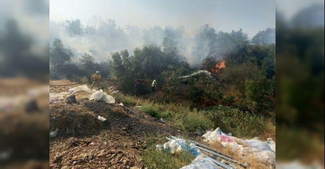 Balıkesir'de aynı saatte iki orman yangını çıktı