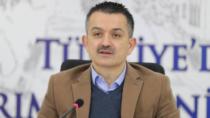 Bakan Pakdemirli, Kahramanmaraş'ta düşen yangın söndürme uçağıyla ilgili açıklamada bulundu