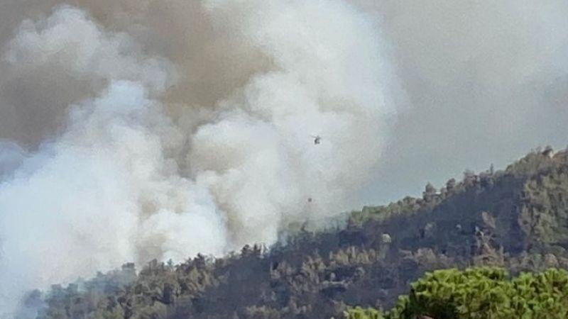 Aydın'ın Çine ilçesinde yangın çıktı