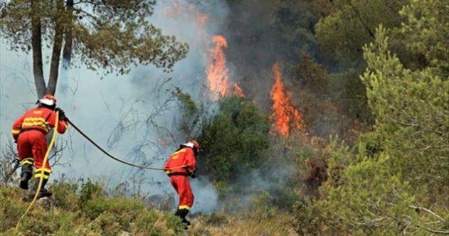 İspanya'da orman yangını: 800 kişi tahliye edildi