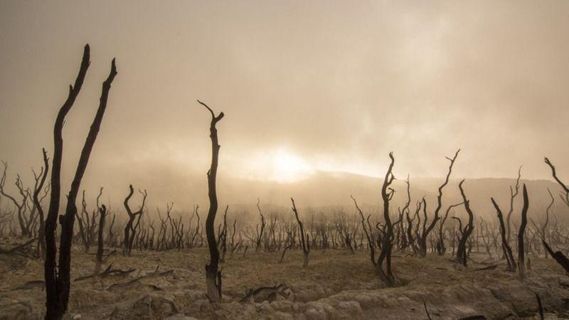 Dünya nereye gidiyor! İklim değişikliğine karşı bilim insanlarından dikkat çeken uyarı
