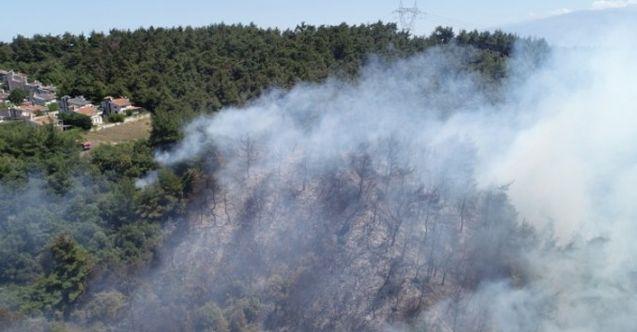 Mudanya'daki orman yangını kontrol altında