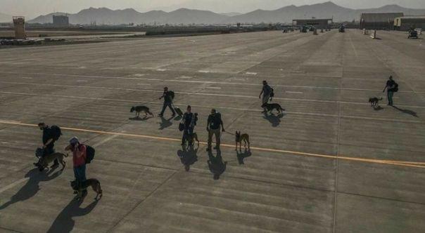 Pentagon: Kabil'den 17 bin kişi tahliye edildi