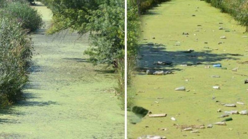 Edirne'de aşırı kirlenen derenin rengi yeşile döndü
