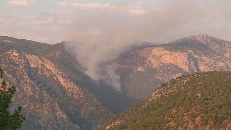 Saimbeyli'de çıkan yangına müdahale devam ediyor
