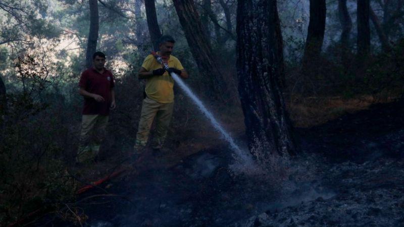 Muğla Seydikemer'de çıkan yangın kontrol altına alındı