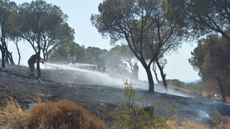 Balıkesir'de çıkan yangın söndürüldü
