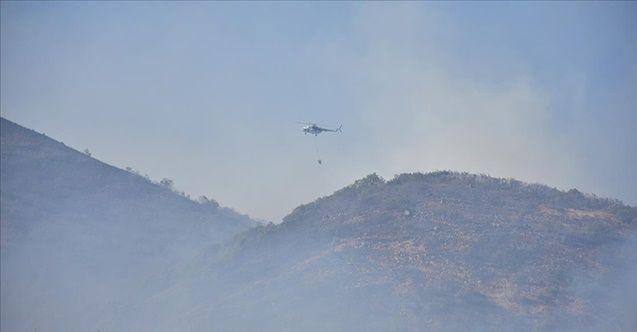 Bingöl'de orman yangını müdahale sürüyor