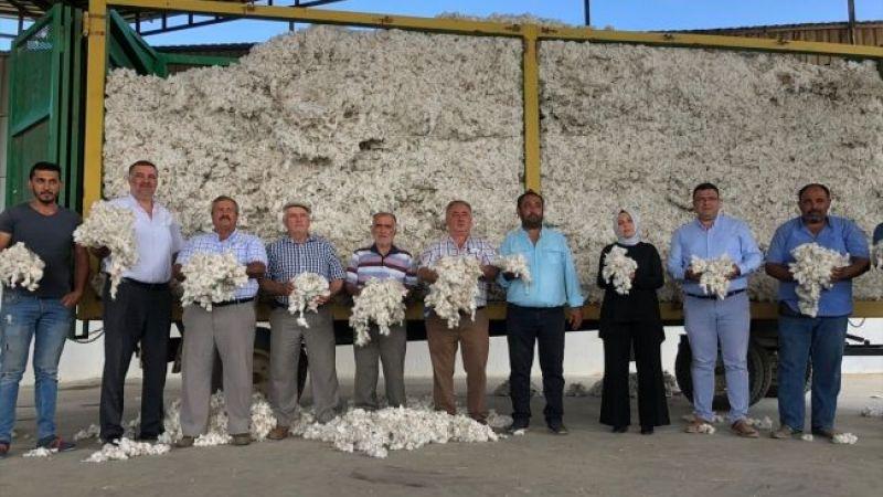 Aydın'ın Nazilli ilçesinde yılın ilk pamuğu için tören düzenlendi