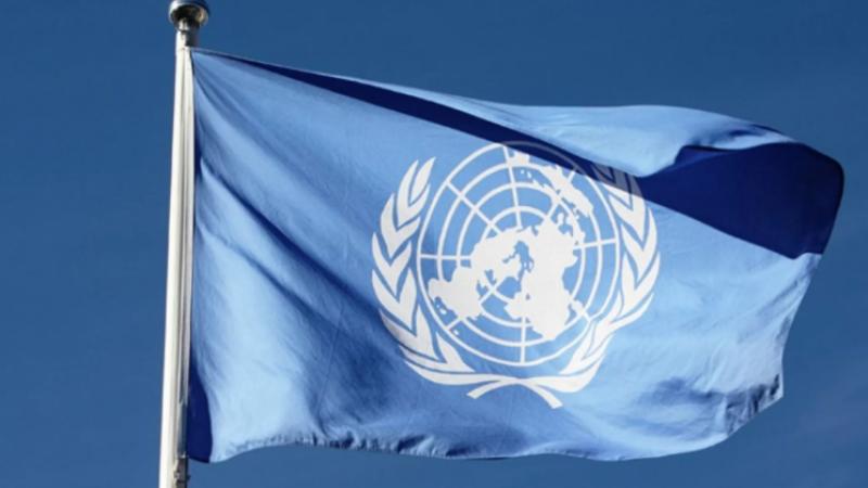 Tunus Cumhurbaşkanı Said'in kararları BM'nin Cenevre Ofisi önünde protesto edildi
