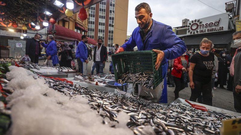 Ankara'da balık bolluğu