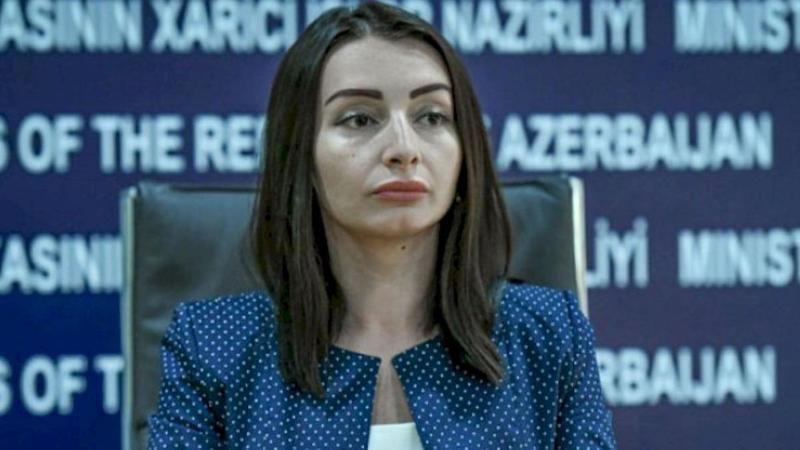 Azerbaycan Dışişleri Bakanı, Uluslararası Adalet Divanı'nda Ermenistan aleyhine dava açacaklarını söyledi