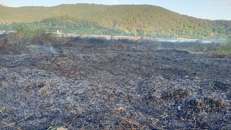 İzmir'de çıkan yangın söndürüldü