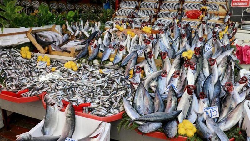 Balık tezgahlarında bolluk yaşanıyor fiyatlar düştü