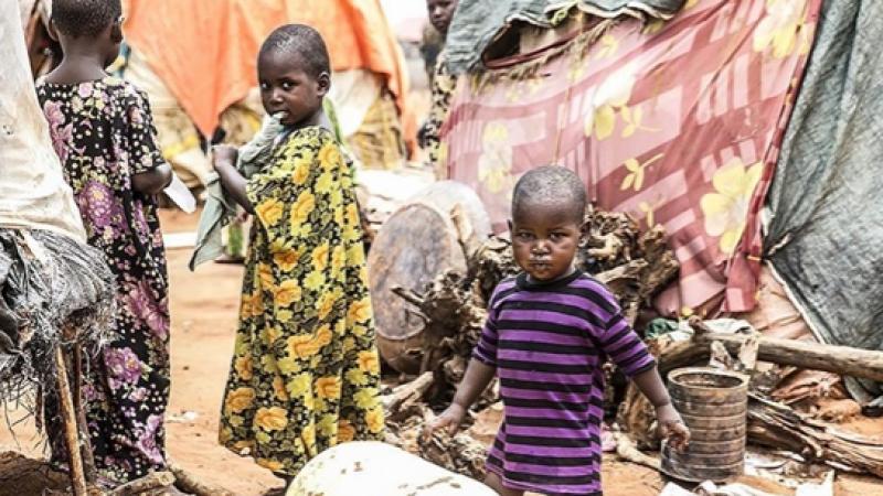 Etiyopya'daki iç savaş insani krizi büyütüyor