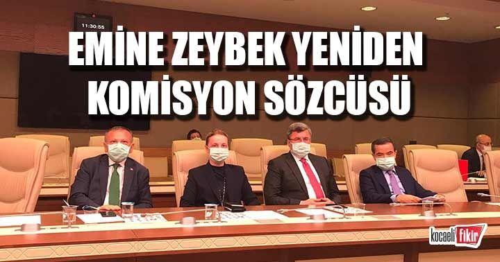 Emine Zeybek yeniden komisyon sözcüsü oldu