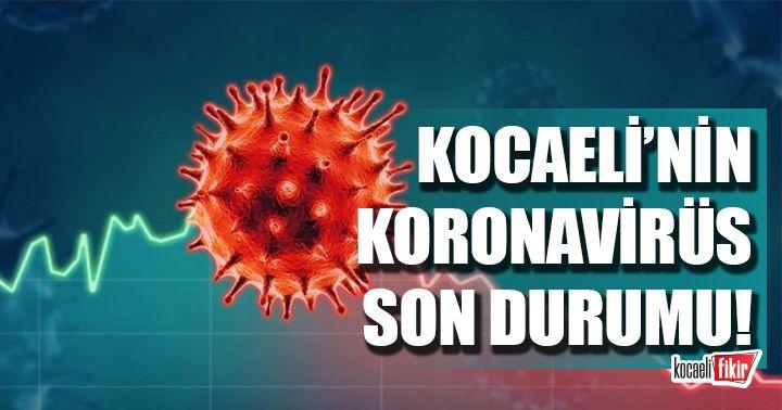 Kocaeli'nin Koronavirüs son durumu