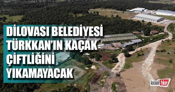Dilovası Belediyesi Türkkan'ın kaçak çiftliğini yıkamayacak