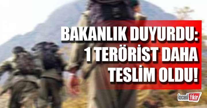 İçişleri Bakanlığı duyurdu: 1 terörist güvenlik güçlerine teslim oldu!