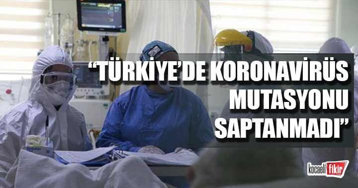 Bilim Kurulu üyesi Prof. Dr. Hasöksüz: Türkiye'de koronavirüs mutasyonu saptanmadı