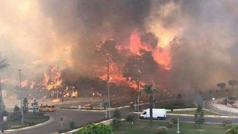 Bakan Altun duyurdu: Yangınlarla ilgili soruşturma başlatıldı