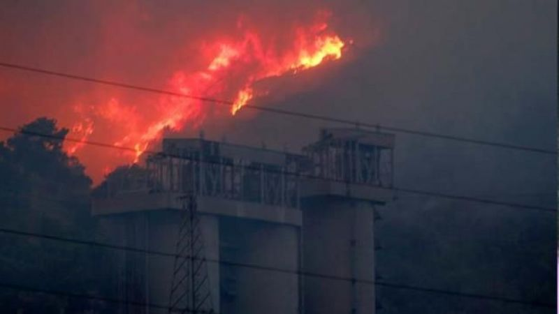 Milas Belediye Başkanı'ndan yeni uyarı: Yangın, Yeniköy Termik Santrali'ne doğru ilerliyor