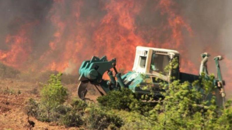 Muğla'da zeytinlik ve ormanlık alandaki yangınlara 6 tutuklama