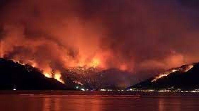 İletişim Başkanlığı açıkladı! 208 orman yangınından 196'sı kontrol altına alındı