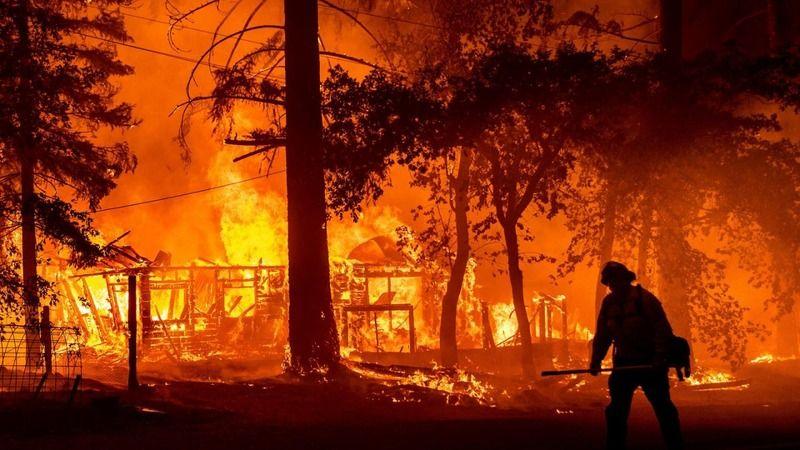 AFAD açıkladı: Orman yangınlarından etkilenen bölgelere 72,5 milyon lira nakdi yardım