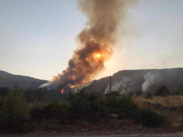 Yangınların kontrol altına alındığı Milas'tan üzen haber! Alevler yeniden yükseldi
