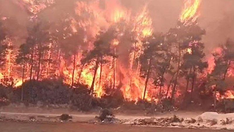 11 gündür devam eden Muğla Milas yangını kontrol altına alındı