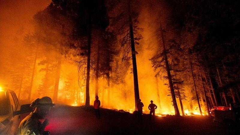 Bakan Pakdemirli duyurdu: Büyük yangınların hepsini söndürdük
