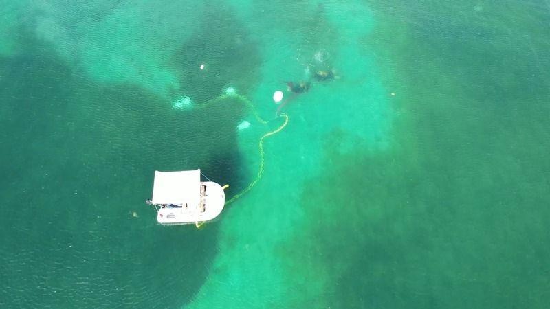 Antik Kerpe limanı su altı kazı çalışmaları denizin dibinden görüntülendi