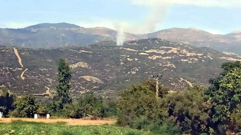 İzmir'in iki ilçesinde orman yangını çıktı