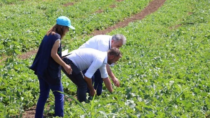 Büyükşehir'den 16.5 milyon TL değerinde tohum desteği