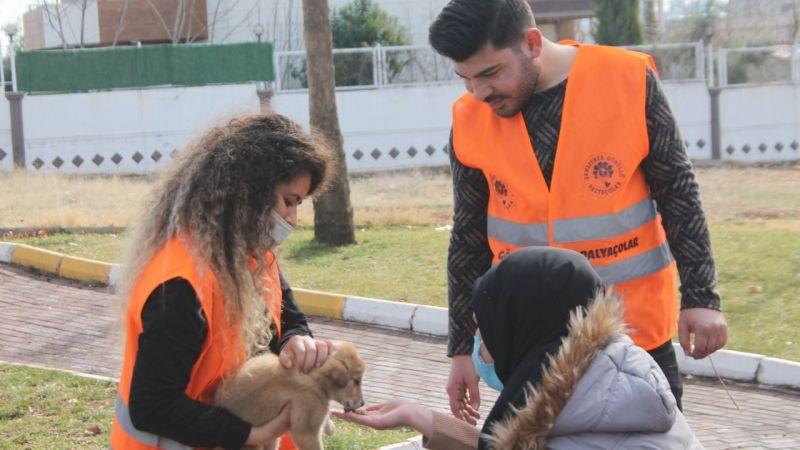 Gönüllü Palyaçolar sokak  hayvanlarını unutmadı!