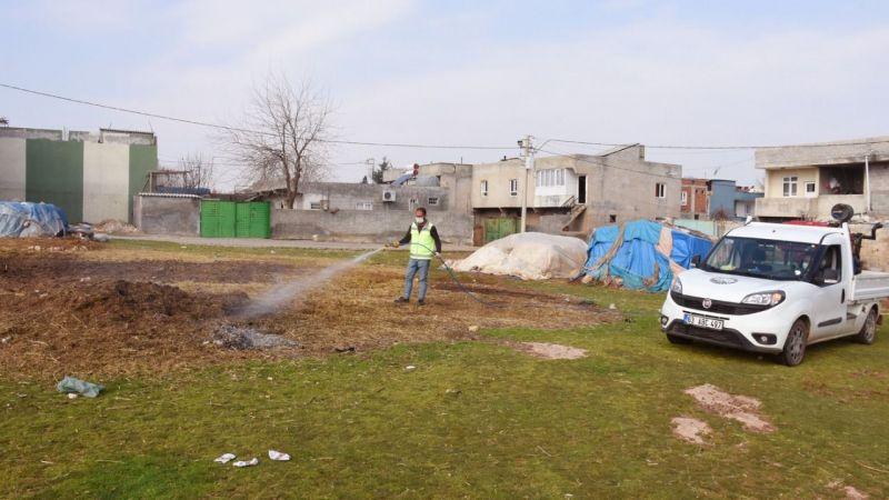Urfa'nın ilçesinde çalışmalar başladı: Üreme alanları ilaçlanıyor!
