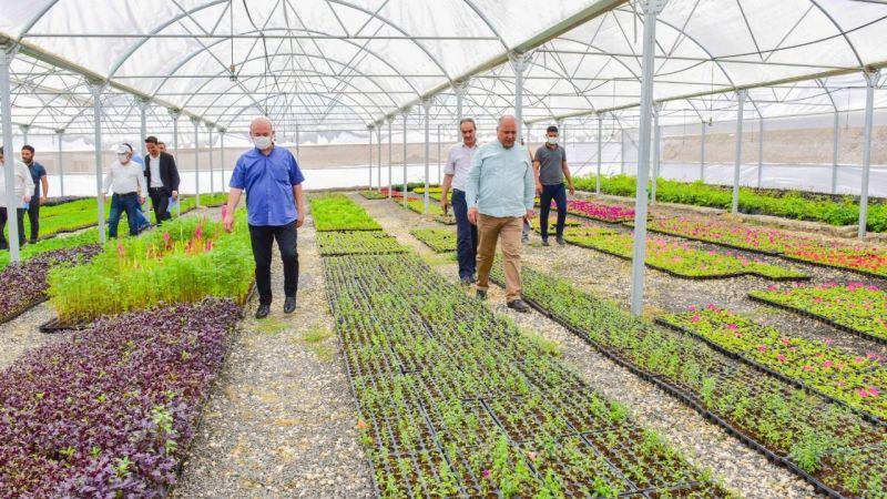 Ceylanpınar Belediyesini kendi bitkisini üretiyor