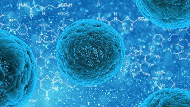 Koronavirüs nedeniyle 48 kişi daha yaşamını yitirdi!