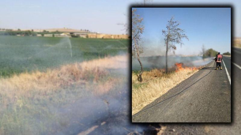 Urfa'da yine anız yangını!