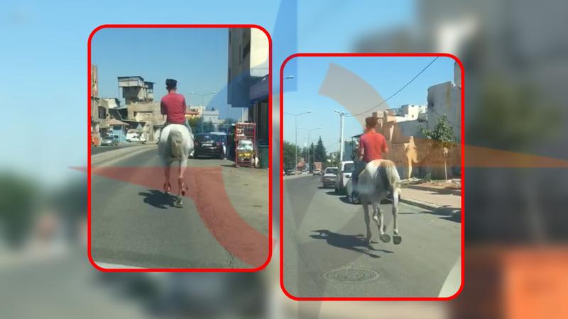Bu görüntü Urfa sokaklarından! At koşturdu