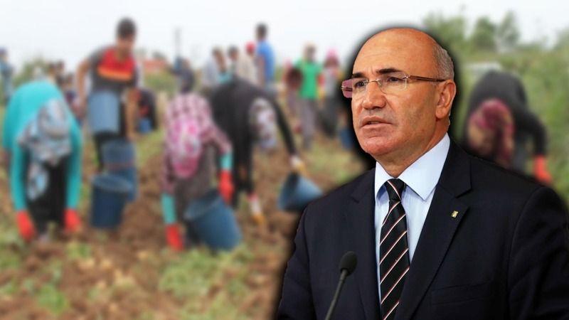 Urfalı Vekil Tanal: Somalililer Türkiye'deki tarım işçilerini görse hallerine şükreder!