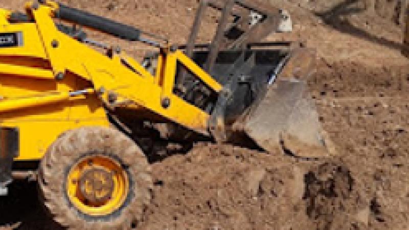 Urfa'da kuduz alarmı: Giriş çıkışlar kapatıldı!