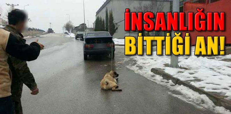 Otomobilinin arkasına bağladığı köpeğini sürükledi