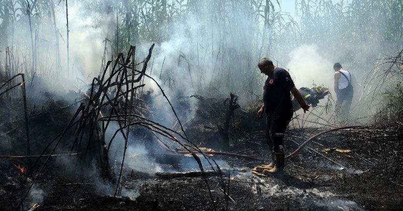 Antalya'da otluk alanda yangın