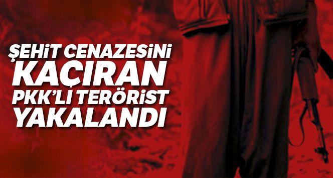 Şehit cenazesini kaçıran PKK'lı Duzyer Kurdi yakalandı