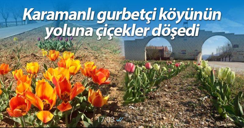Karamanlı gurbetçi köyünün yoluna çiçekler döşedi