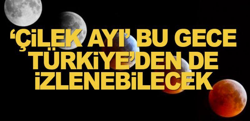 'Çilek Ayı' bu gece Türkiye'den de izlenebilecek